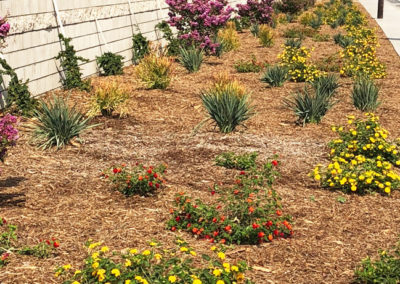 commercial-hoa-landscaping-photo-02-opt
