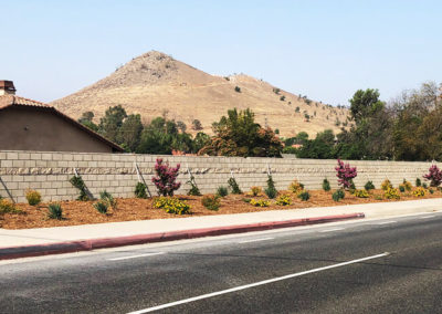 commercial-hoa-landscaping-photo-03-opt