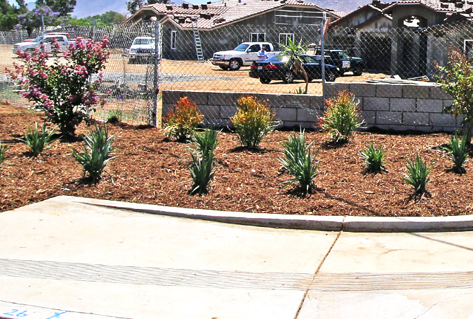Innovate Landscape - Commercial Landscaping Service - Riverside - Ontario - Inland Empire